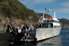 BBC Oceans in Tasmania.