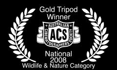 ACS_Laurels_Nat_GT_2008_Wildlife