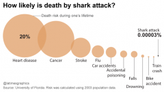 What are your chances of you being taken by a Great White Shark?