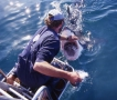André Hartman pushes off a Great White Shark